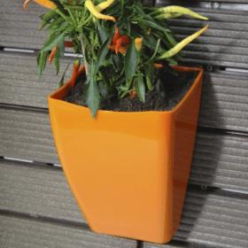 Cachepô para jardim vertical 3