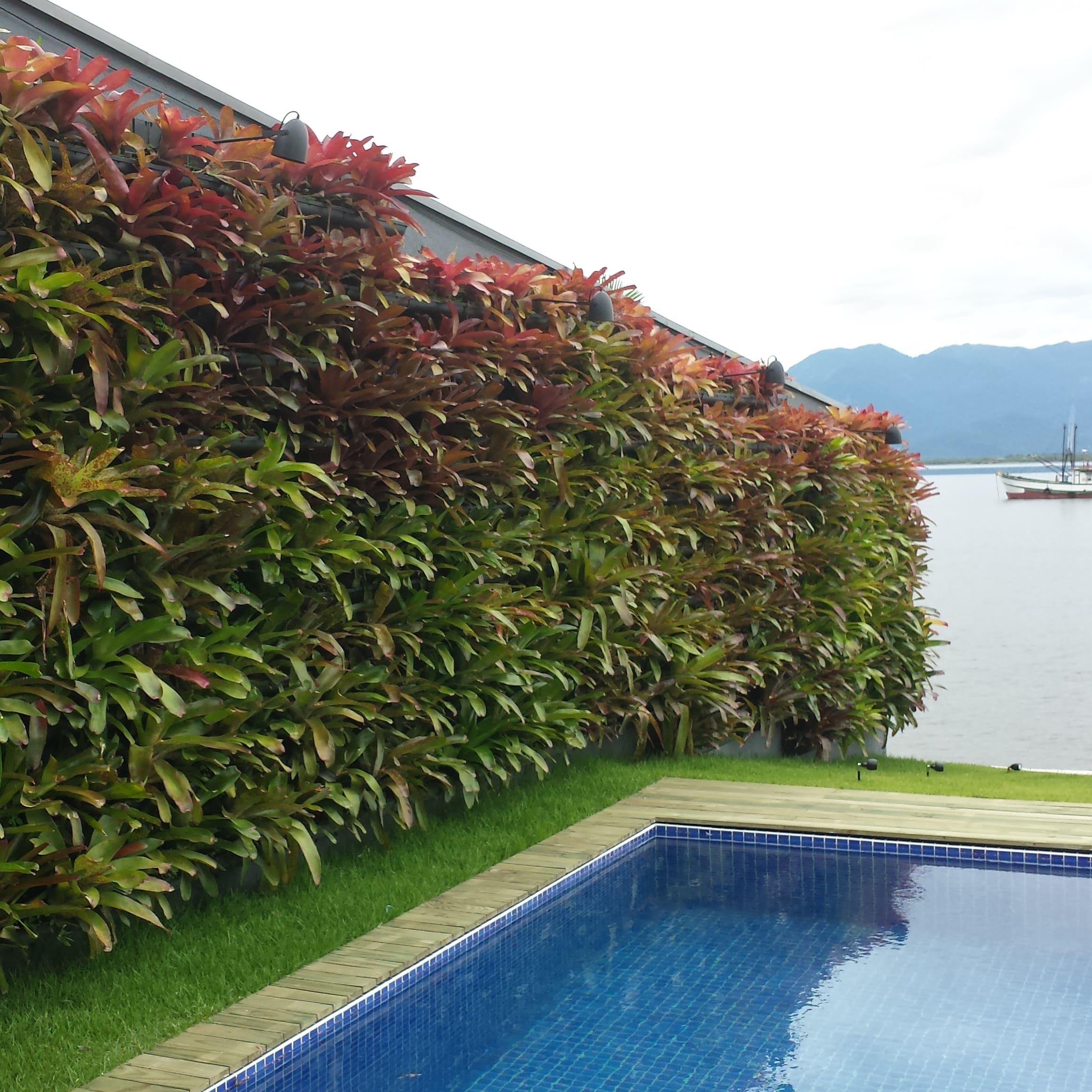 Módulo para jardim vertical ao lado da piscina