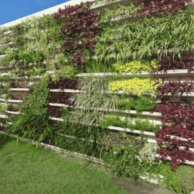 Módulo para jardim vertical em horta vertical