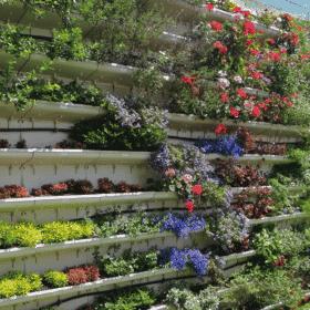 Módulo para jardim vertical com flores