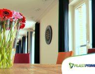 Plantas dentro de casa: mais vida