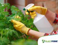 Controle pragas e doenças de forma natural