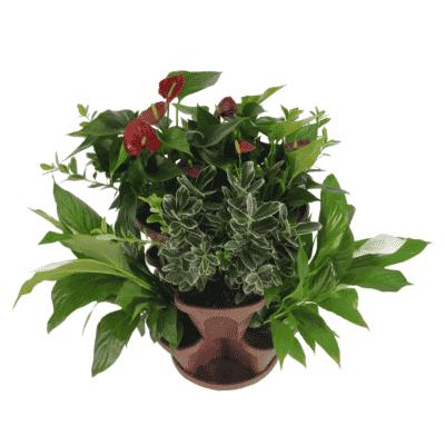 Vasos empilháveis marrom com plantas