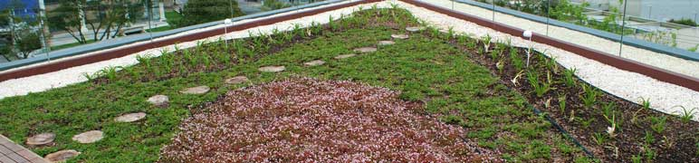 Telhado Verde feito com a Estrutura Permeável da PlastPrime
