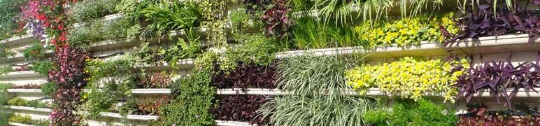 Jardim Vertical PlastPrime
