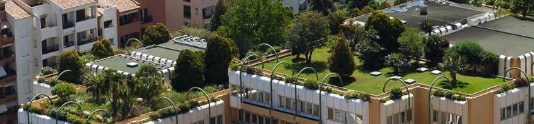 Telhado Verde - Sustentável