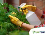 6 fertilizantes orgânicos feitos em casa