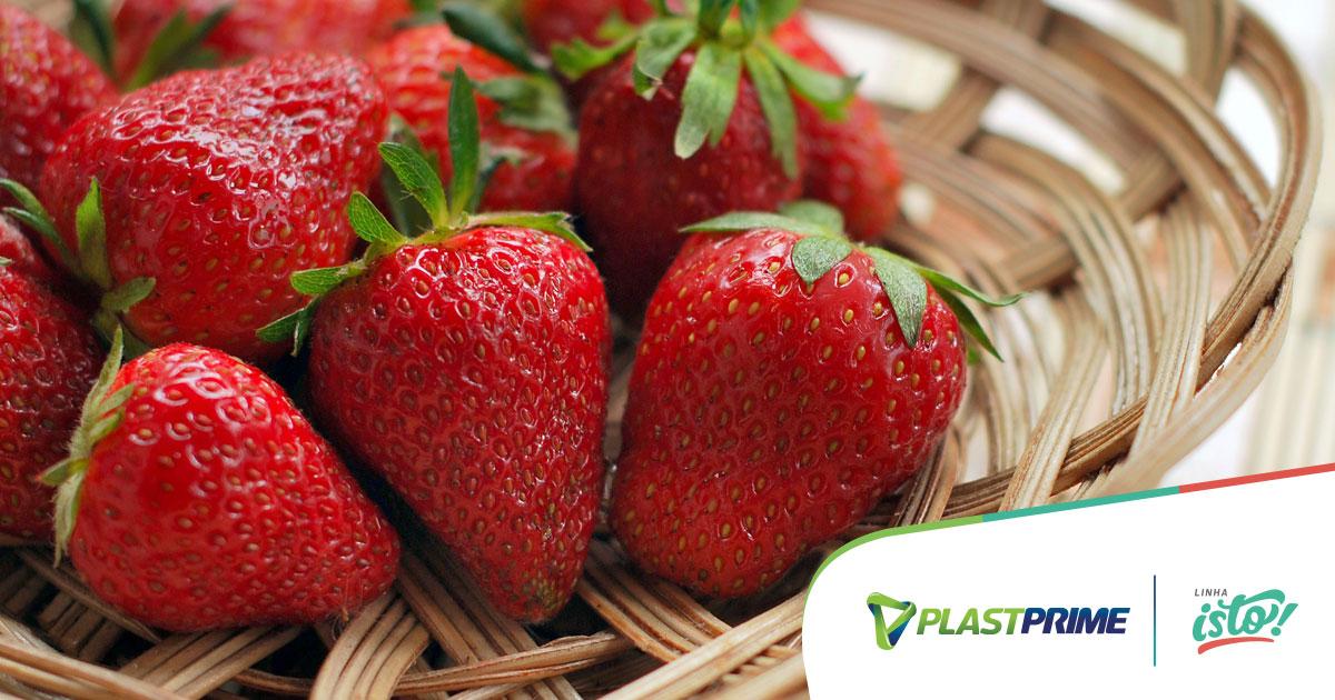 Como cultivar morangos na sua horta?