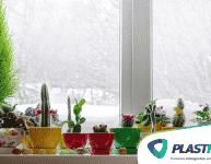 Como cuidar das plantas no inverno?