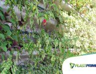 Como criar um paisagismo de jardim vertical?