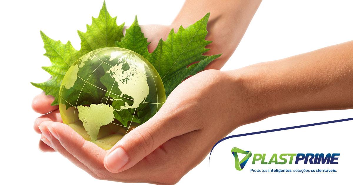 Sustentabilidade: como fazer sua parte para ajudar o planeta