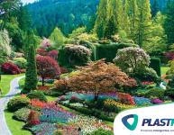 10 dicas para quem quer ter um jardim bonito e valorizado