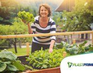 10 dicas indispensáveis para uma horta saudável