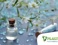 Plantas cosméticas: saiba como usá-las para beleza