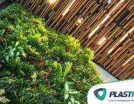 Melhores plantas para jardim vertical