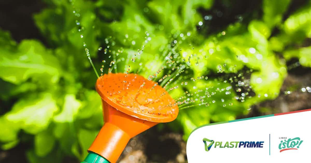 Como fazer a irrigação das plantas de jardim vertical?