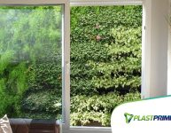Quais plantas usar nos Módulos para Jardim Vertical?
