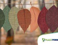 Outono: o que acontece com as plantas?