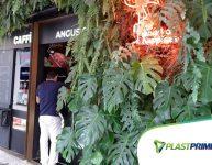 Urban Jungle: entenda o que é e como transformar sua casa!