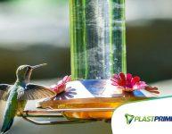 Atraia pássaros para o seu jardim