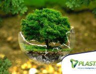Leis ambientais: é bom conhecer