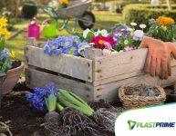 Como replantar vasos e retirar mudas das plantas