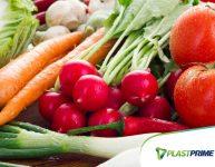 8 alimentos que podem ser replantados